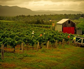 Around Hermitage Wine and Food Trail Hunter Valley - Accommodation Melbourne