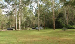 Mill Creek picnic area - Accommodation Melbourne