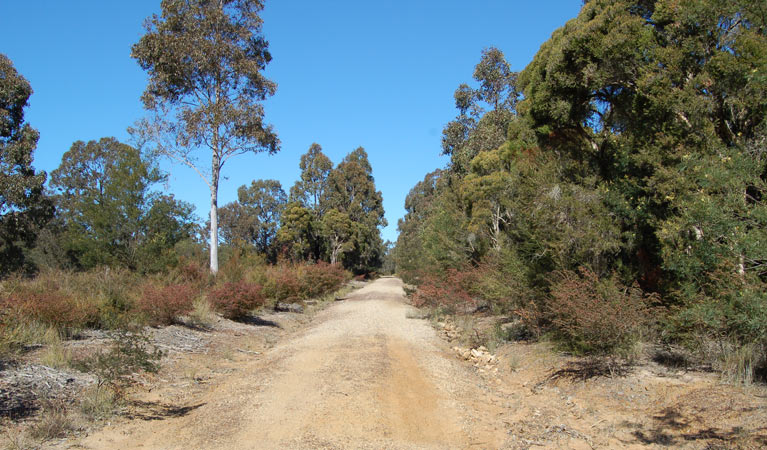 Werakata National Park - Accommodation Melbourne
