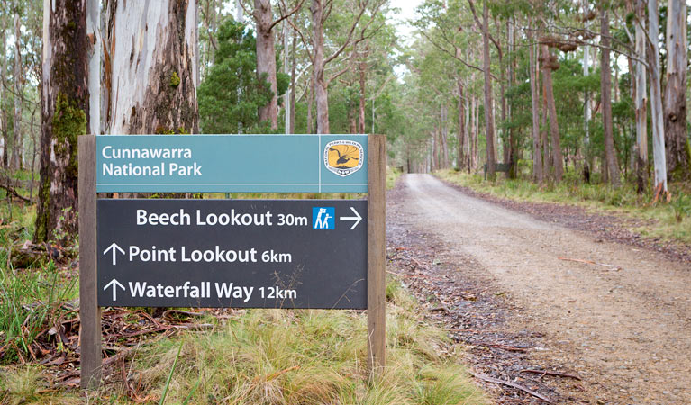 Beech lookout - Accommodation Melbourne