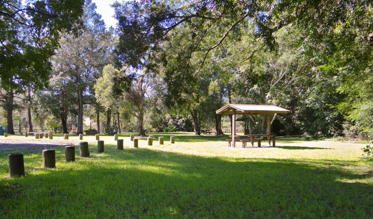 Moore Park picnic area - Accommodation Melbourne