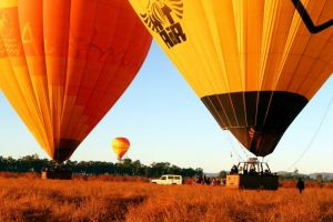 Hot Air Balloon Scenic Rim - Accommodation Melbourne