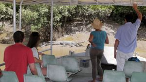 Whitsunday Crocodile Safari - Accommodation Melbourne