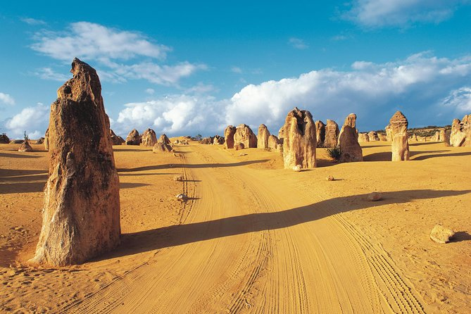 Pinnacles Desert, Koalas, and Sandboarding 4WD Day Tour from Perth