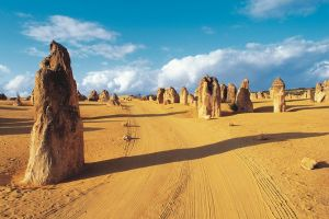 Pinnacles Desert Koalas and Sandboarding 4WD Day Tour from Perth - Accommodation Melbourne