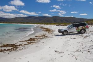 4X4 and Lunch Half Day Bicheno Coastal Mountain - Accommodation Melbourne