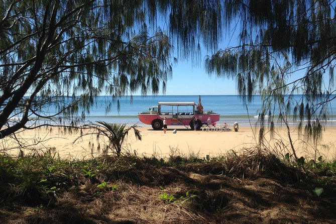 1770 Coastline Tour by LARC Amphibious Vehicle Including Picnic Lunch - Accommodation Melbourne