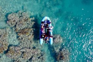 Glass-bottom boat tour with Whitehaven Beach - Accommodation Melbourne