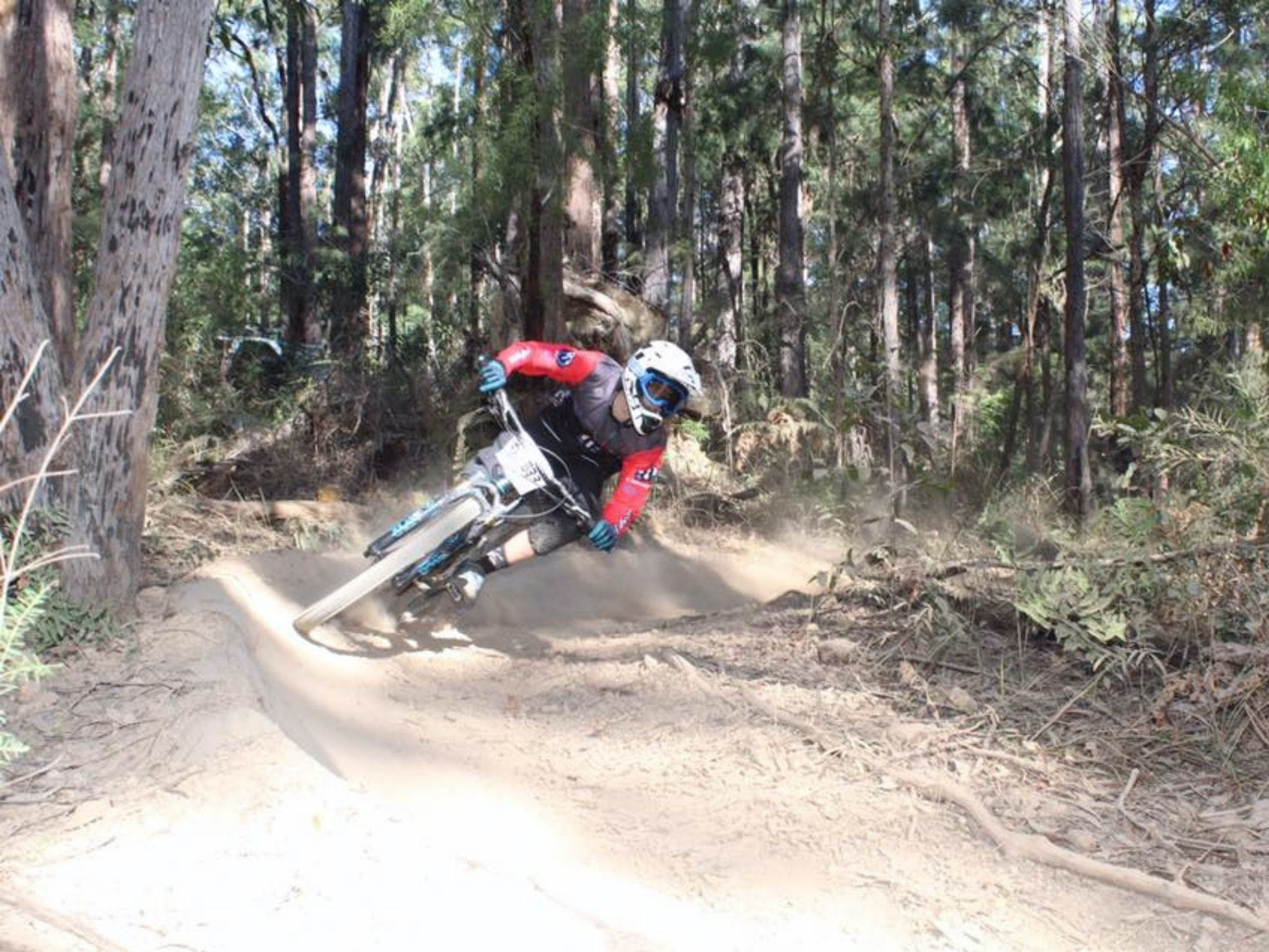 Jolly Nose Mountain Bike Park - Accommodation Melbourne