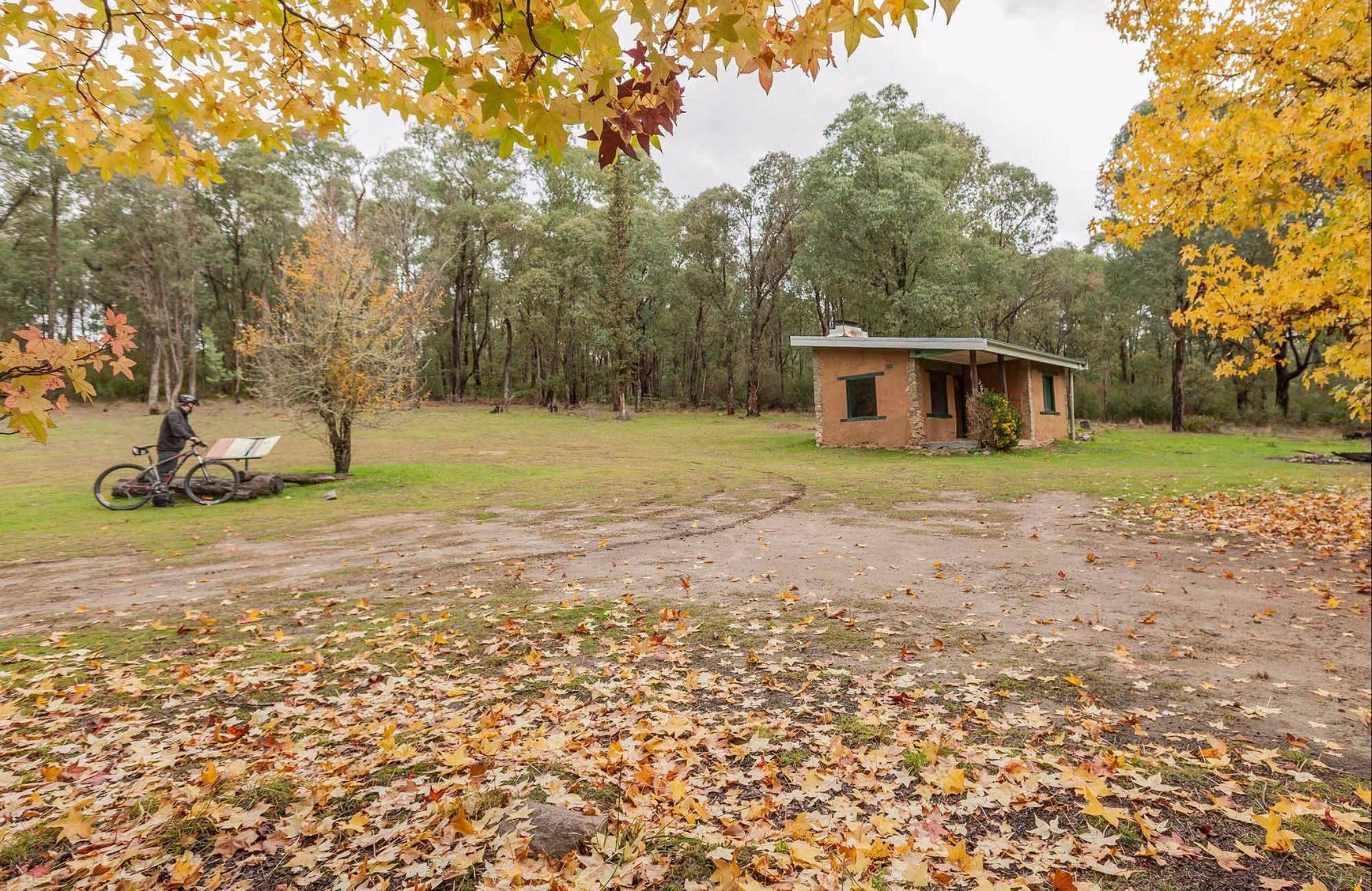 Major Clews Hut Walking Track - Accommodation Melbourne