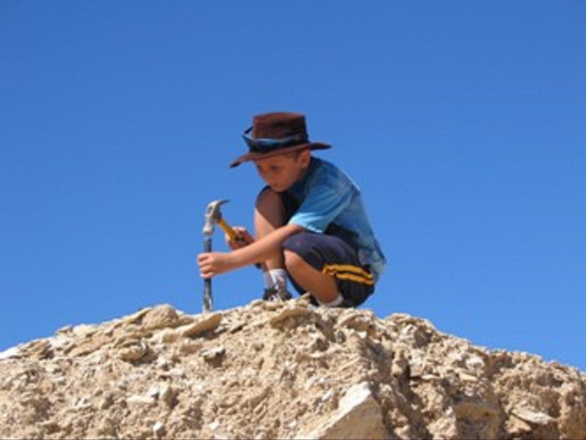 Richmond Fossil Hunting Sites - Accommodation Melbourne