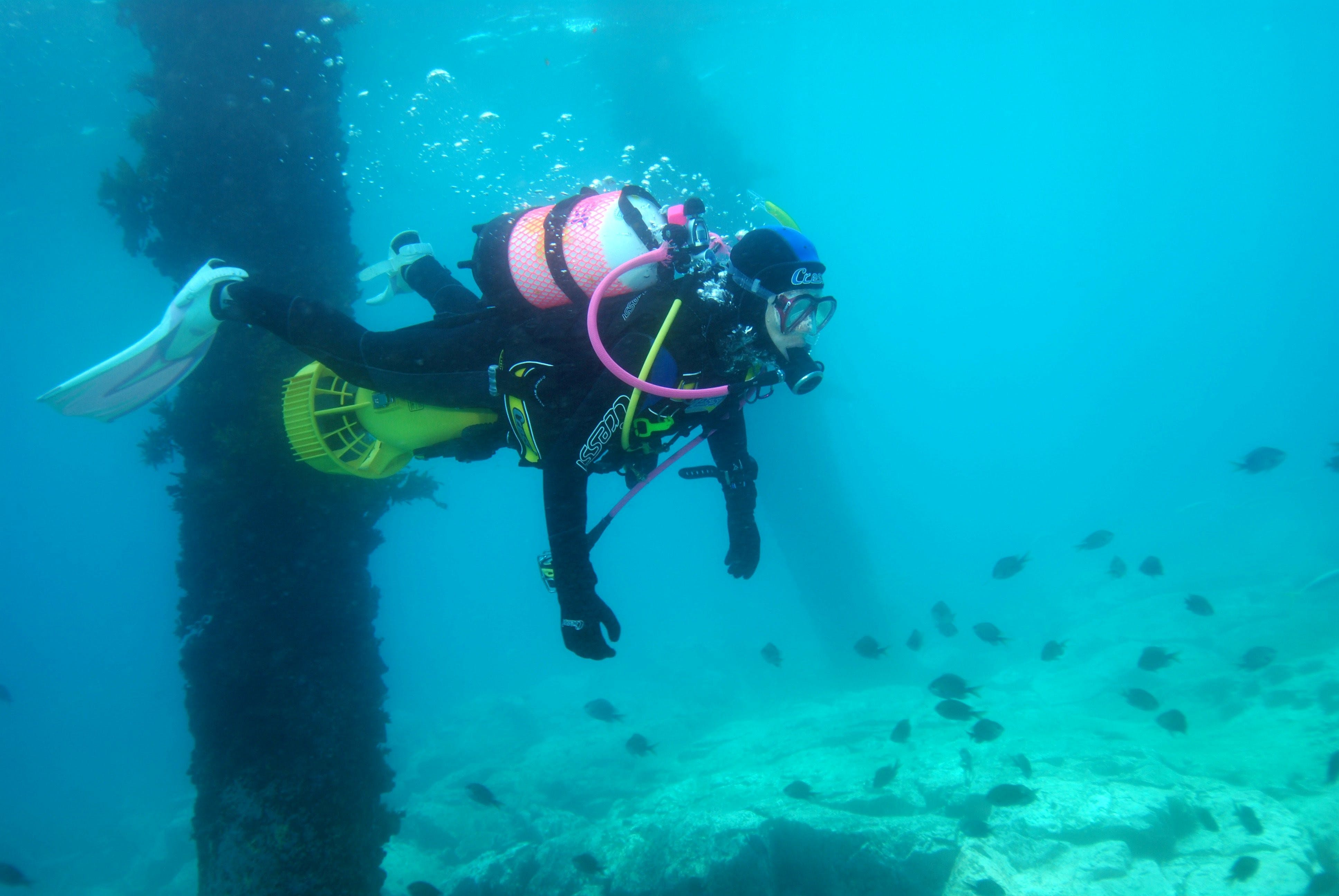 Shellharbour Scuba  and Photography Centre - Accommodation Melbourne