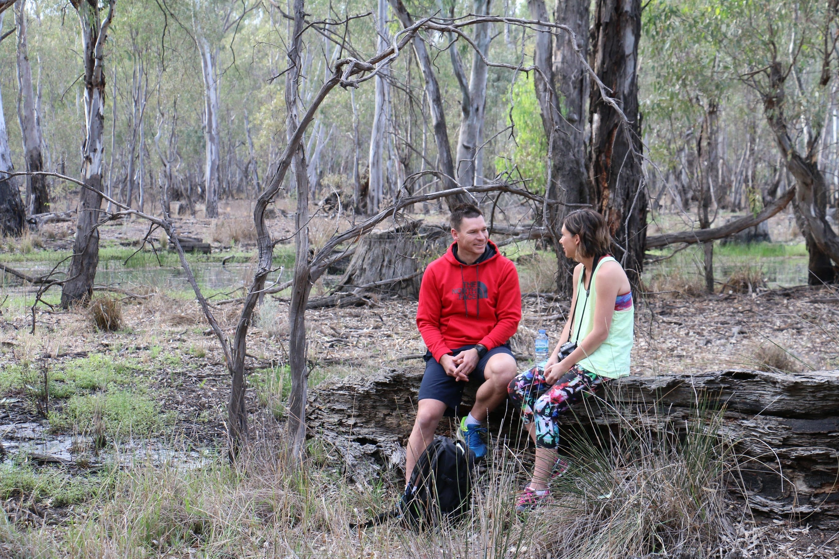 Gunbower Island Forest Drive - Accommodation Melbourne