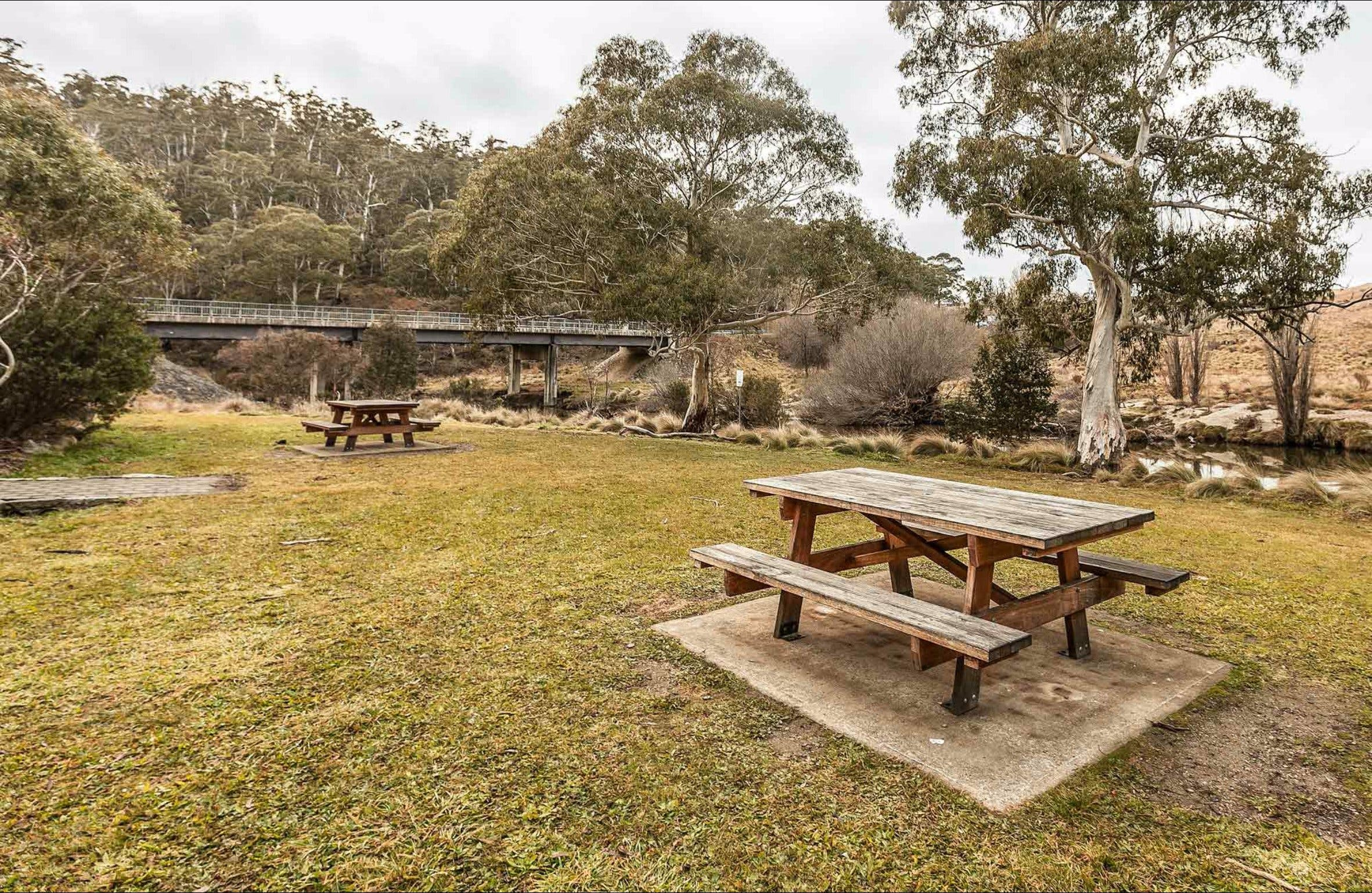 Thredbo River picnic area - Accommodation Melbourne