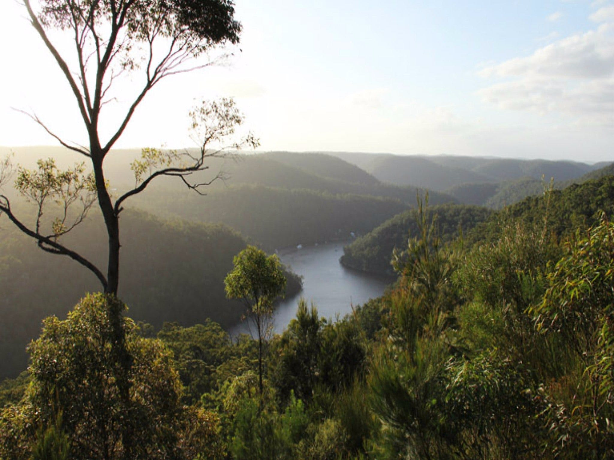 Berowra Valley National Park - Accommodation Melbourne