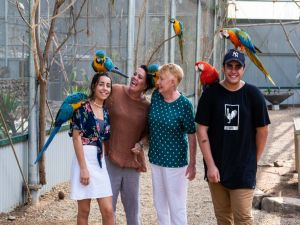 Maleny Botanic Gardens and Bird World - Accommodation Melbourne