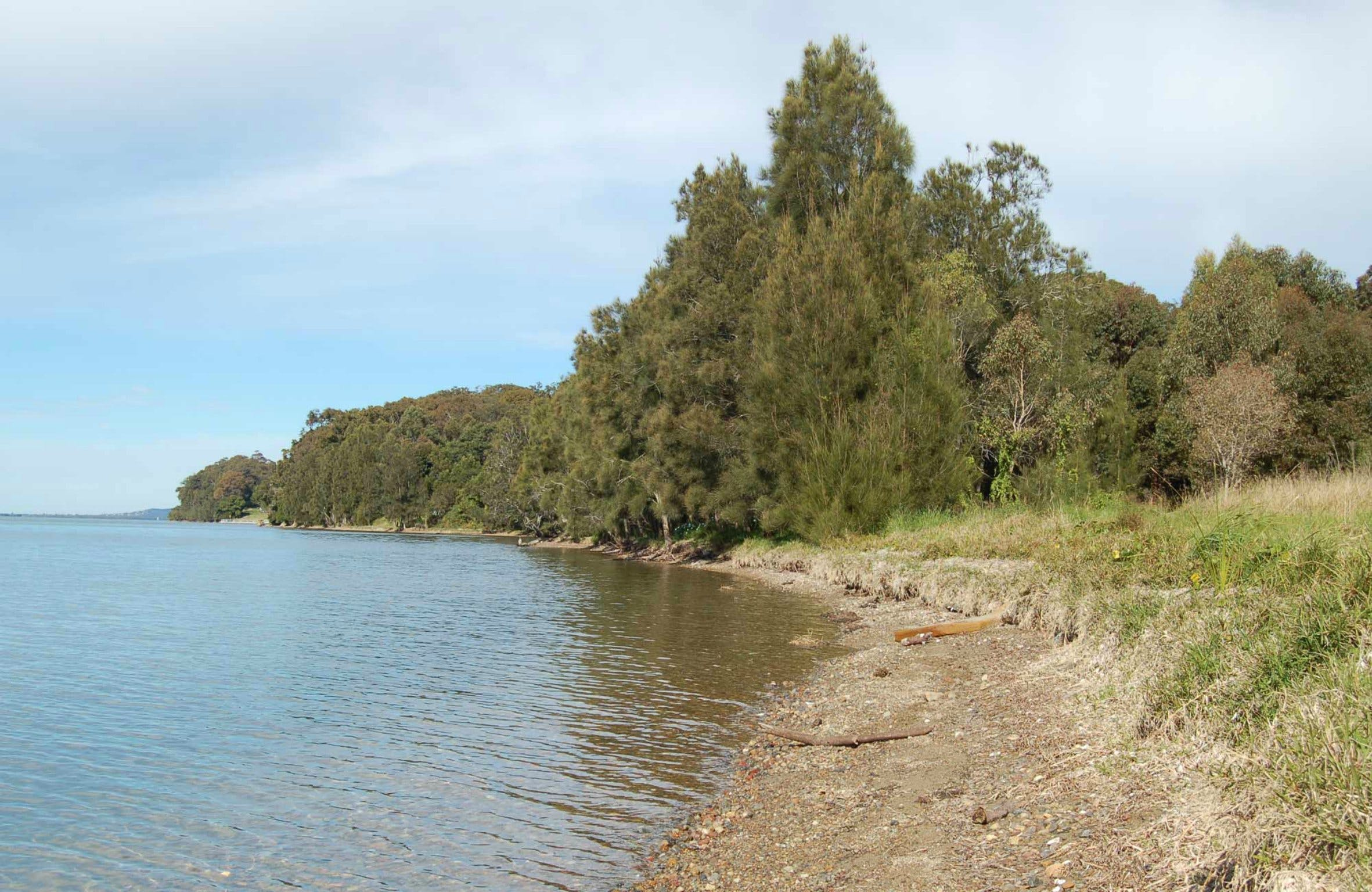 Lake Macquarie State Conservation Area - Accommodation Melbourne