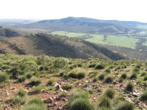 Horseshoe Rim 4WD Adventure Track - Accommodation Melbourne