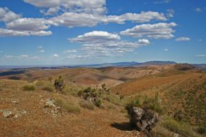 Arden Hills 4WD Track. - Accommodation Melbourne