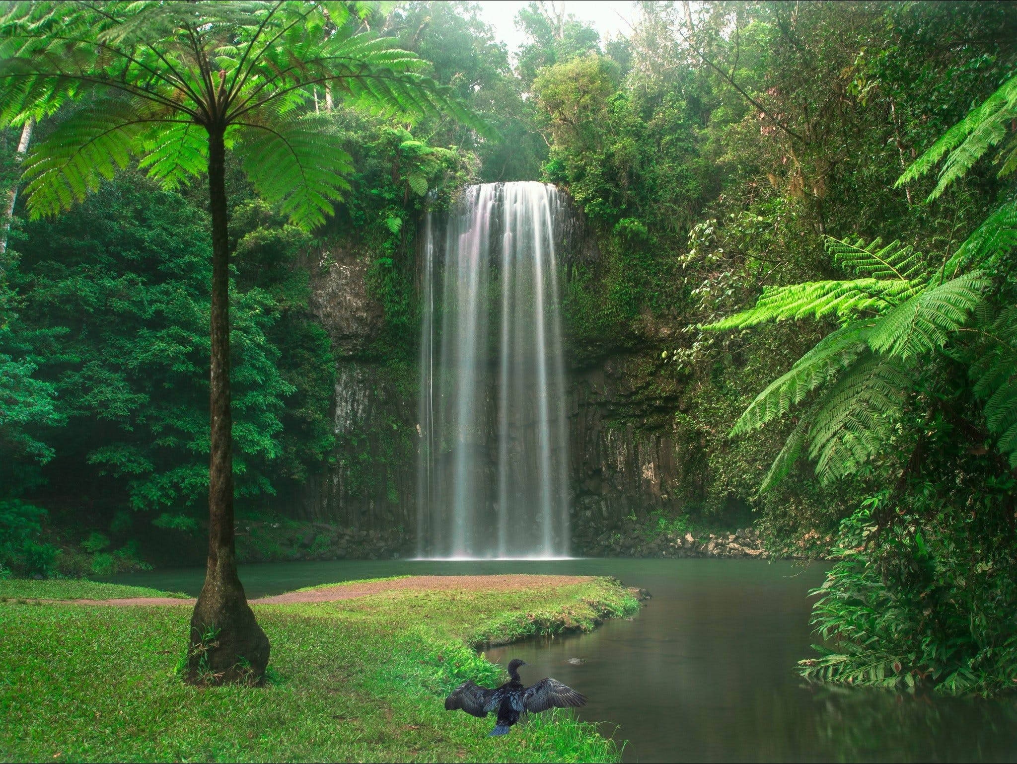 Atherton Tablelands - Accommodation Melbourne