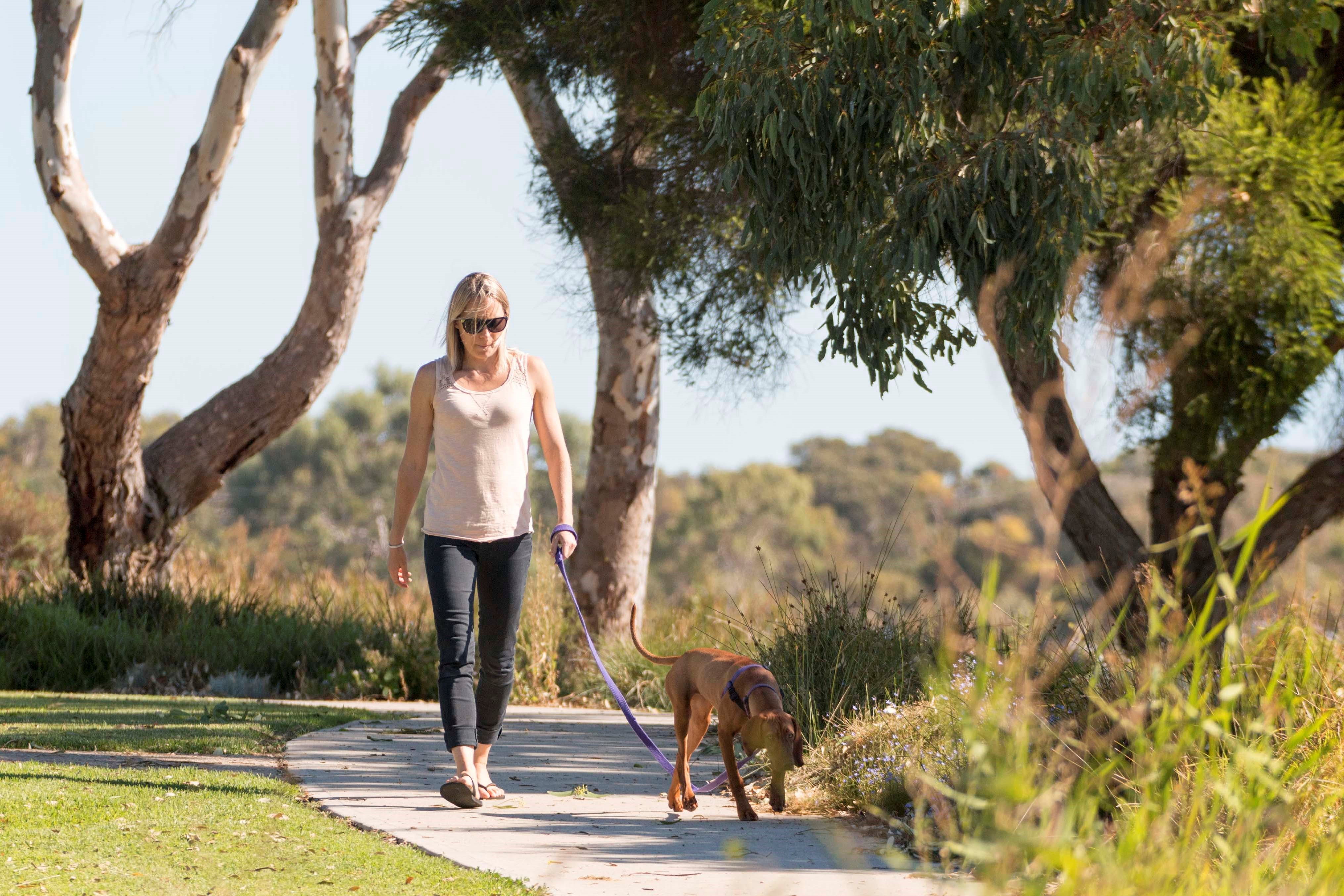 Meningie Walking and Cycling Trails - Accommodation Melbourne