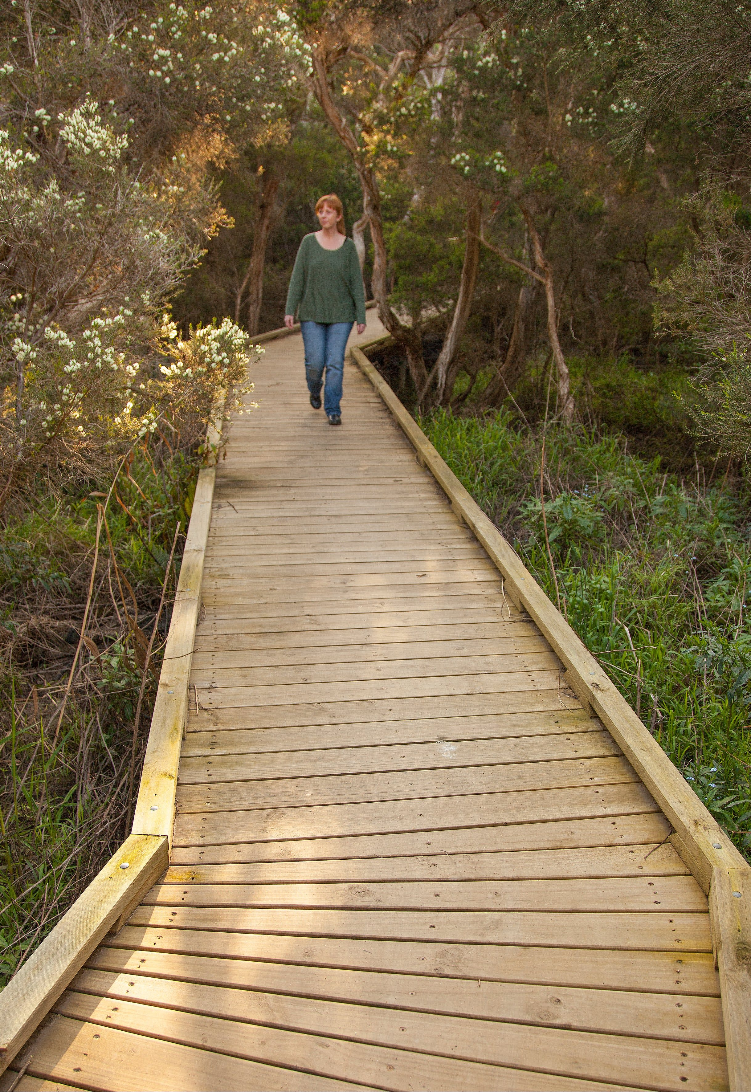 Balcombe Creek Estuary Boardwalk - Accommodation Melbourne