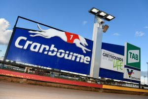 Cranbourne Greyhound Racing Club - Accommodation Melbourne