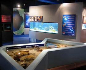 Marine and Freshwater Discovery Centre - Accommodation Melbourne