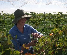 Kingsdale Wines - Accommodation Melbourne