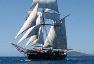 Australian Tallship Cruises - Accommodation Melbourne