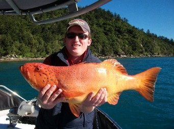 Gone Fishing by Coral Sea Fishing Charters Airlie Beach - Accommodation Melbourne