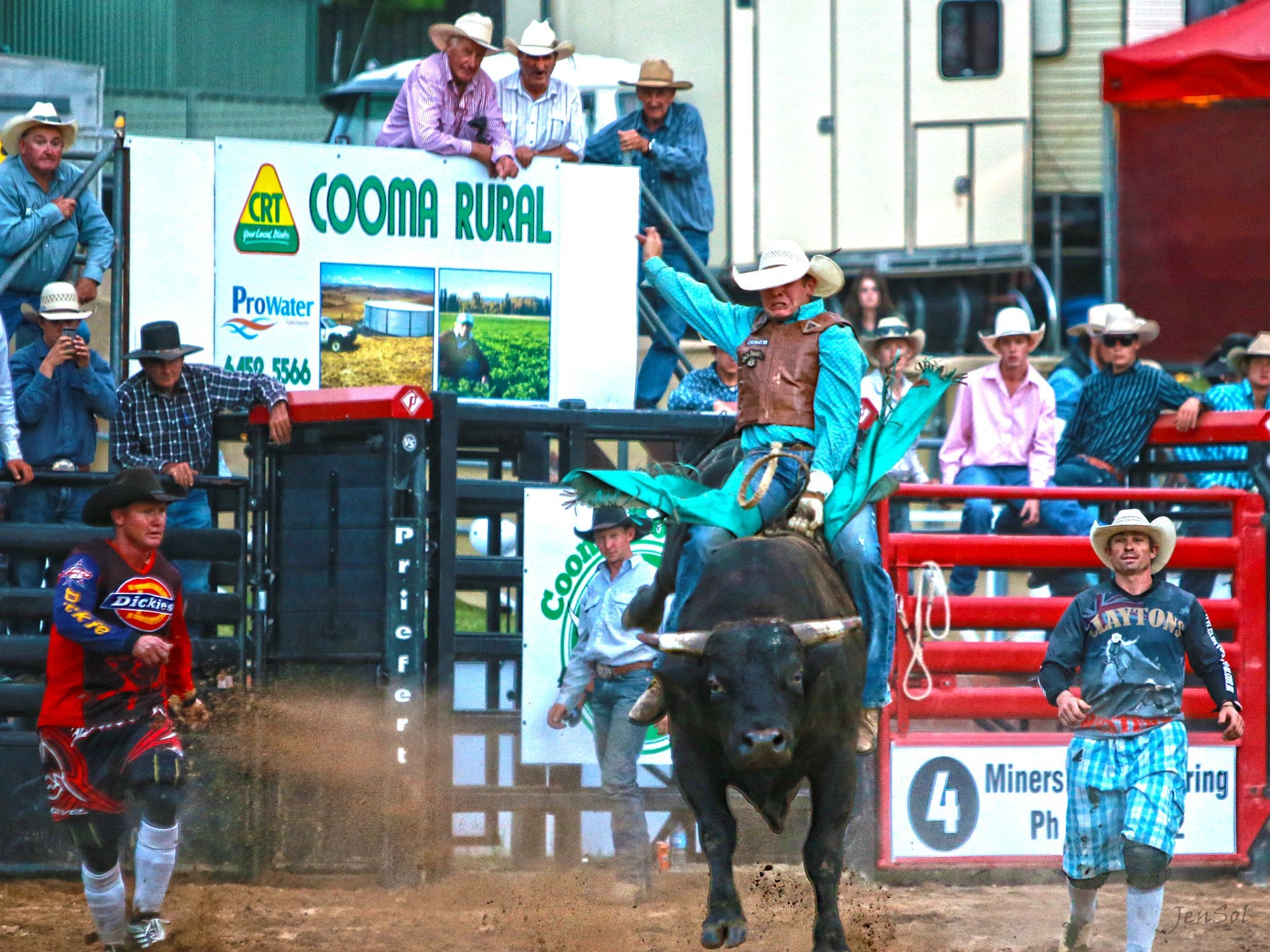 AgriWest Cooma Rodeo - Accommodation Melbourne