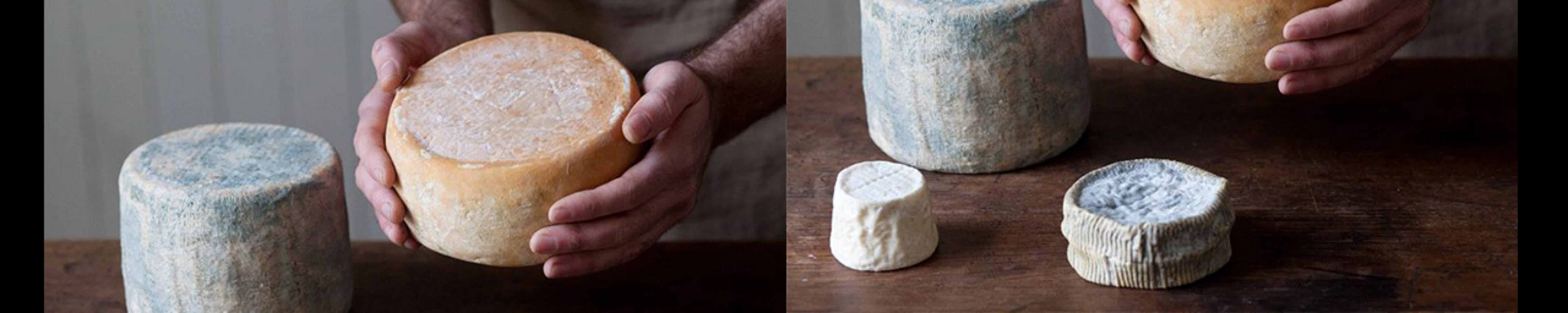 Cheese Making Basics Class - Accommodation Melbourne