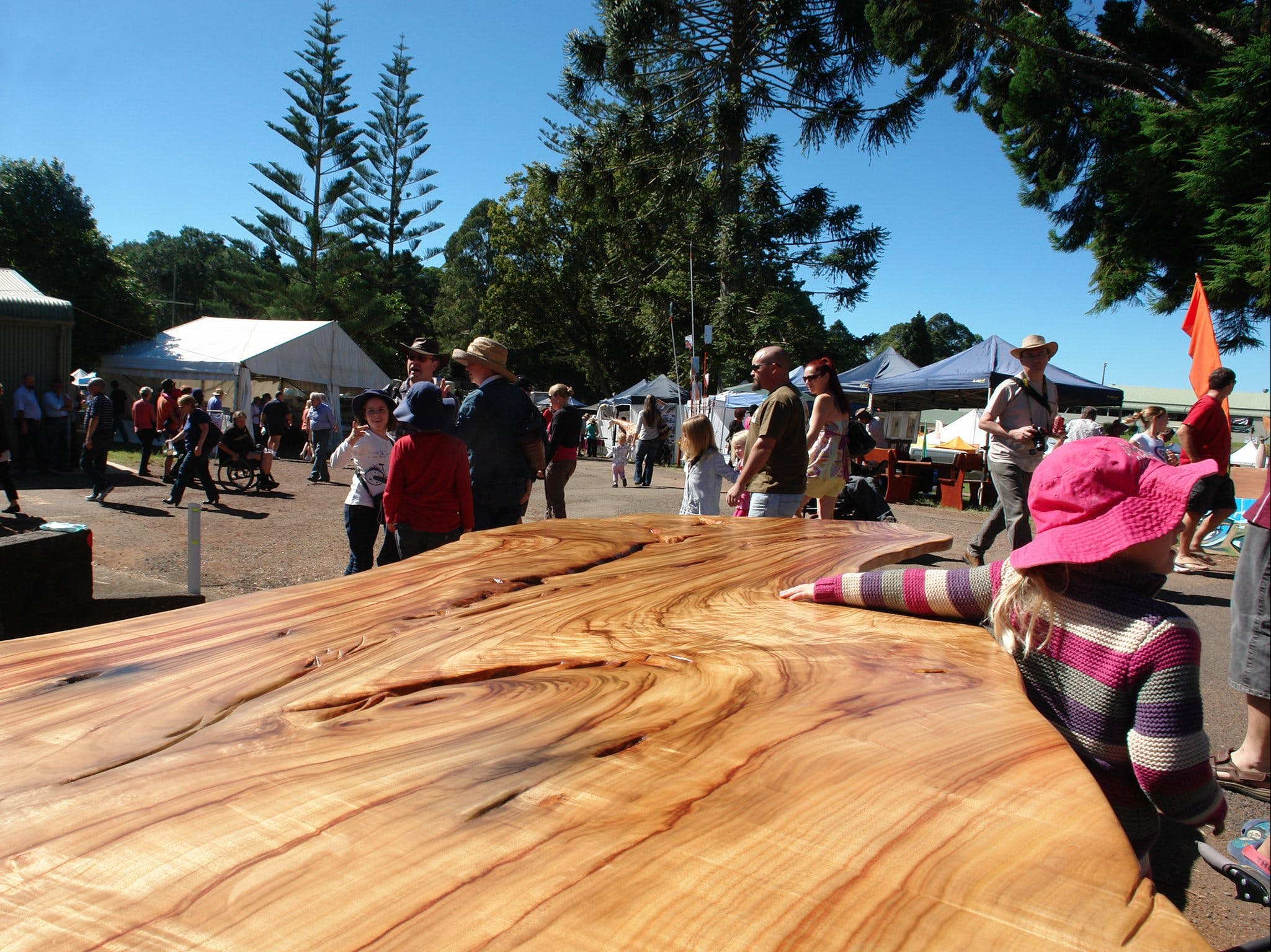 Maleny Wood Expo From Seed to Fine Furniture - Accommodation Melbourne