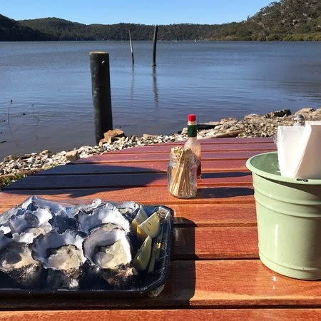 Hawkesbury River Oyster Shed - Accommodation Melbourne