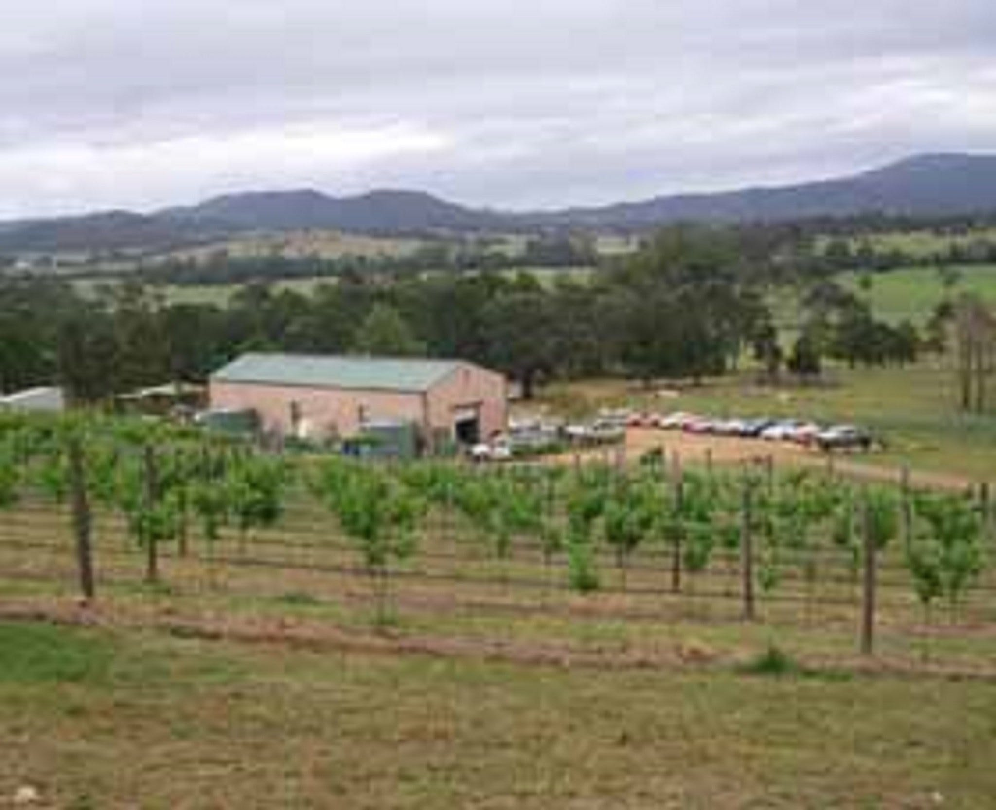 Villa d Esta Vineyard - Accommodation Melbourne