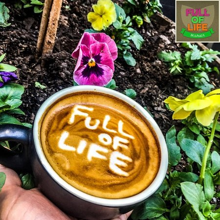 Full of Life Organics - Accommodation Melbourne