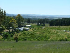Taralee Orchards - Accommodation Melbourne