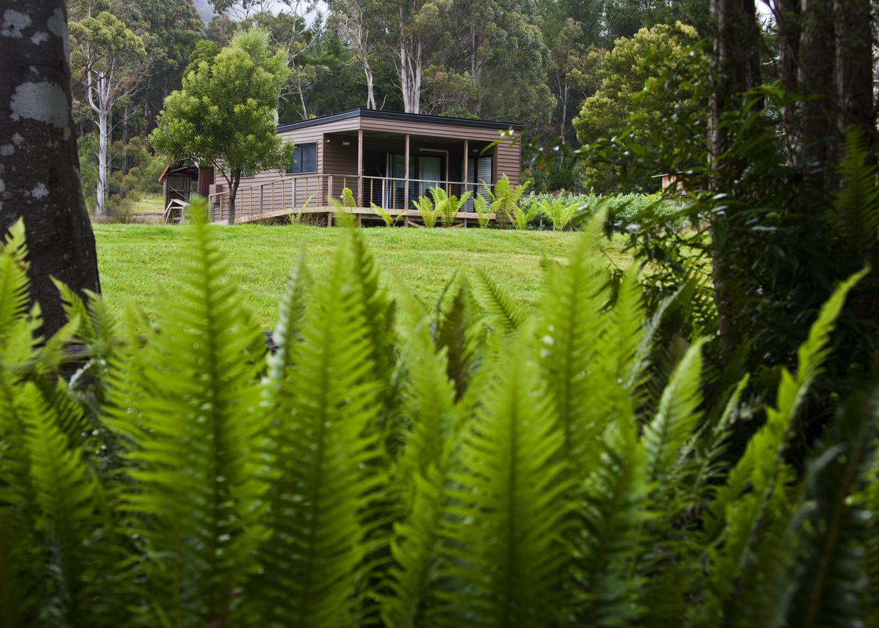 Tyenna River Cottage - Accommodation Melbourne