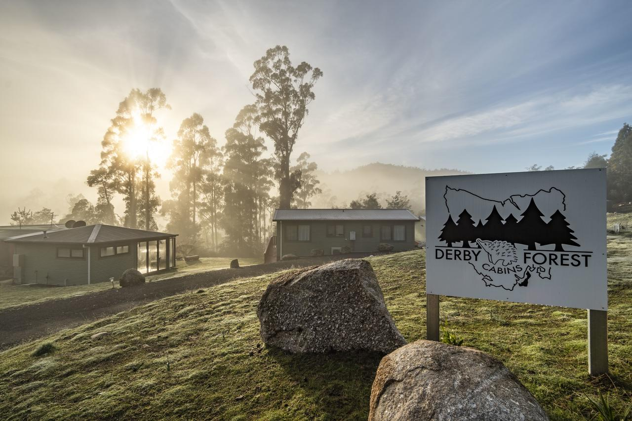 Derby Forest Cabins - Accommodation Melbourne