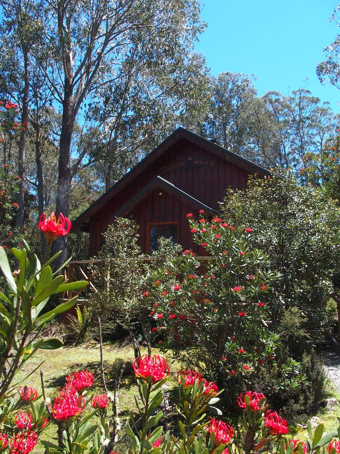 Cradle Mountain Highlanders - Accommodation Melbourne