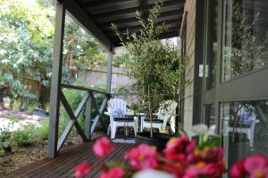 Haig Avenue - Accommodation Melbourne